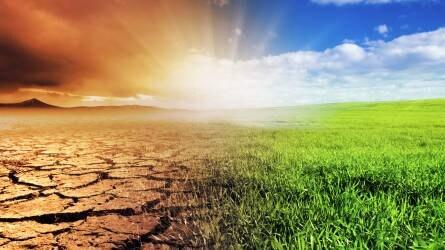 Klímaváltozás: kihívások és lehetőségek a mezőgazdaságban