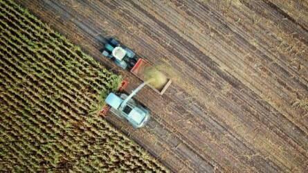 Maradtak a gondok: éhezés és klímaváltozás – Mit tehetünk az élelmiszerproblémák megoldása érdekében?