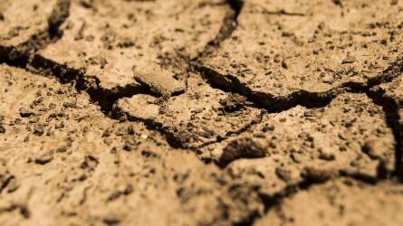 Amit a talajról feltétlenül tudni kell