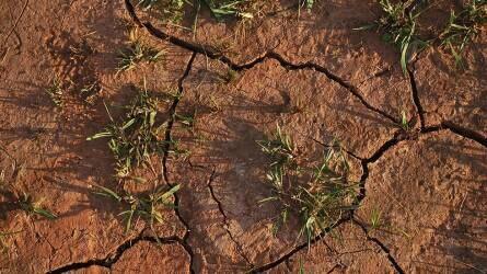 Megjelent a vízháztartási tájékoztató novemberi kivonata