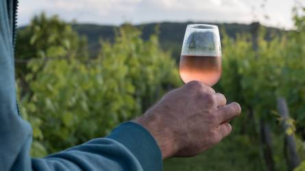Balla Géza nyerte el az év bortermelője díjat