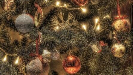 Karácsonyfa-vásárlás II. rész