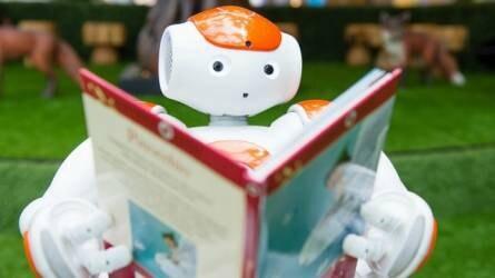 Jövőre robotok lepik el Magyarországot