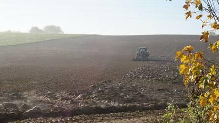 Tovább emelkedett a termőföld ára, de lassult a drágulás üteme