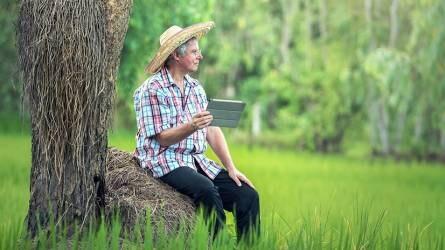 Nagy István: esélyegyenlőséget kell biztosítani a gazdáknak a digitalizáció terén