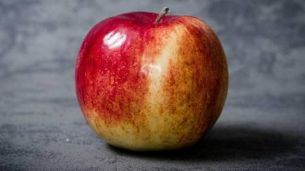 Három új hazai nemesítésű rezisztens almafajta: Bellona, Damara és Isolda