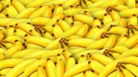 Kevesebb banánt szállított az unióba Ecuador