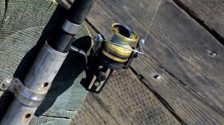 A horgászat a legtöbb embert vonzó szabadidős sport itthon