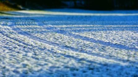 Kemény hideg lesz, de a hóréteg megvédi a vetést