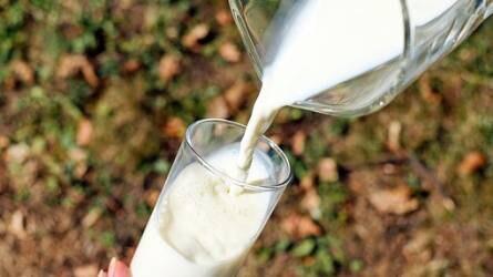 Sovány tejpor: elkelt az intervenciós készletek 99 százaléka