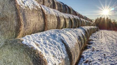 Februárban próbaösszeírás lesz a mezőgazdaságban