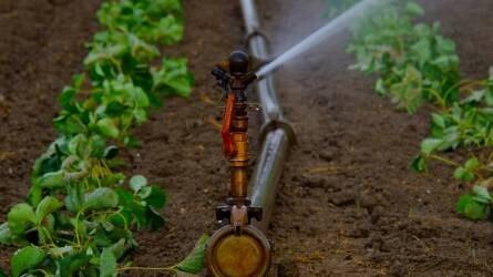 Mesterséges vízpótlás segíthet az aszály elkerülésén