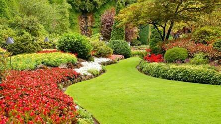 Tavaszi nagytakarítás a kertben