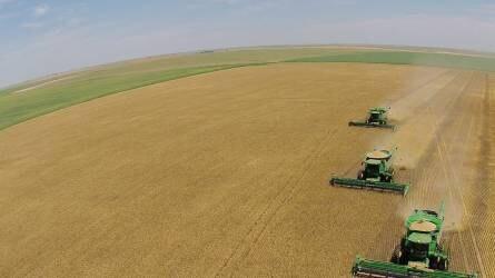 Ki csinálja jobban? – Búza termesztéstechnológia hazánkban és az Egyesült Államokban