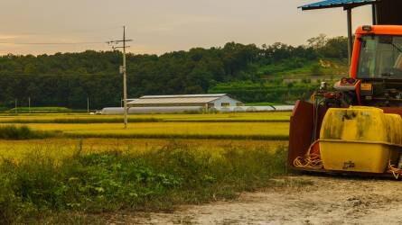 Tudatos talajhasználat és a talajok szervesanyag-gazdálkodása (1.)