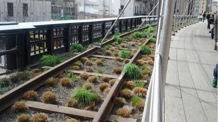 """Felhagyott vasútvonal, mint a városmegújítás eszköze: a """"High Line"""" New Yorkban"""
