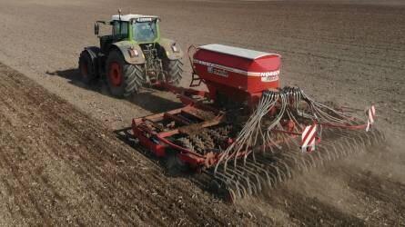 A növény, ami jelentős extra profitot hozhat - Megdupláznák a mák magyarországi vetésterületét