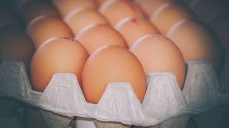 Csak etikusan működő vállalkozásoktól származó tojást fog értékesíteni a Tesco