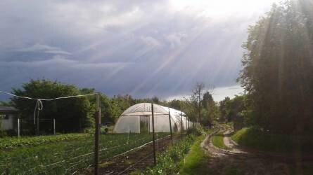 A természetközeli termesztés szellemisége