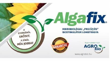 Algafix® - A gyengéből erőset, a jóból még jobbat