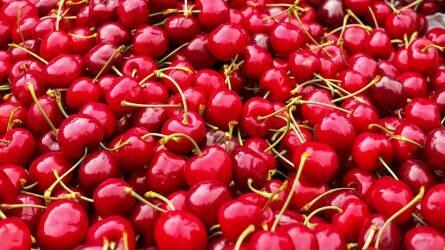 Drágul az idei cseresznye a kevesebb termés miatt