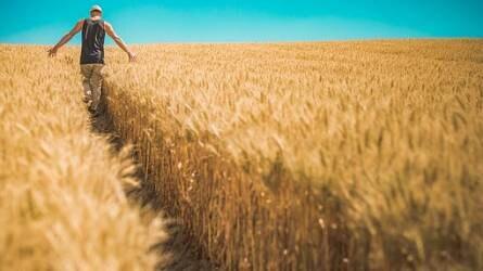 A Talentis Agro Csoport számít a fiatal agrárszakemberekre