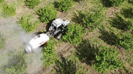 Permetezés a csányi gyümölcsültetvényben - Növényvédelem a cserebogarak és a tetűkolóniák ellen