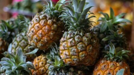 Délkelet-ázsiai kertkultúra Dél-Amerikában – a Közös Agrárpolitika támogatásával