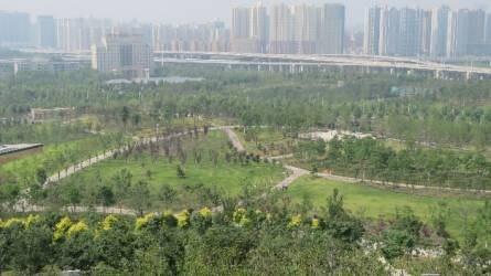 Tájépítészként Zhengzhou-ban, Kínában