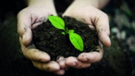 Fontos a tápanyaggazdálkodási-terv a vidékfejlesztési támogatásoknál