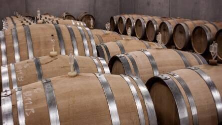 Hamarosan kiderül milyen lesz a 2019-es évjáratú bor