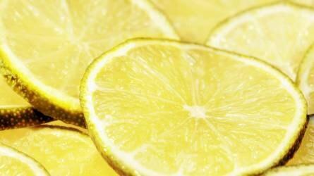 Meghódítanák Európát a chilei citrusfélék