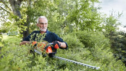 Nyári kertápolási tippek: Hogyan maradjon szép és üde a nyár végéig a kert?