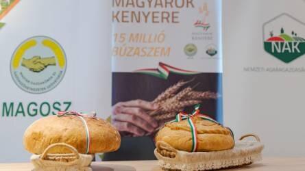 Idén is elindult a Magyarok Kenyere - 15 millió búzaszem program