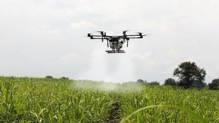Küszöbön a robotok hatalomátvétele a növénytermesztésben