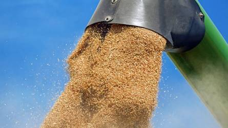 Csúnya lejtőn a gabonapiac