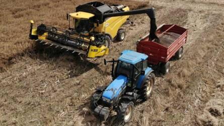 Repce betakarítás Acsádon - Majdnem 4 tonnás termésátlagot hozott az új technológia