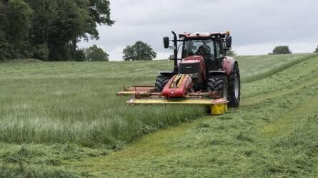 Főnövény-betakarítás: a szedés, kaszálás nem betakarítás!