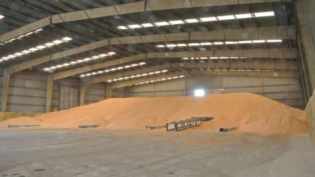 Terményárak: a kukorica ára több hónapos mélypontra esett