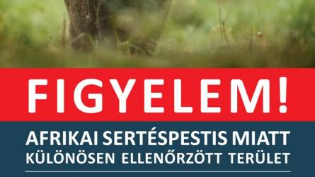 Figyeljünk oda a plakátokra a budai erdőkben!