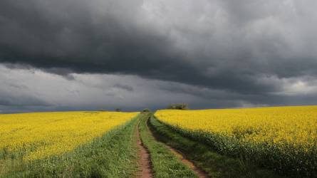 26 százalékkal csökkenhet a vidékfejlesztésre fordítható forrás