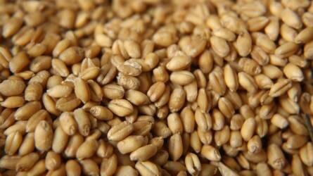 Csökkentek az agrártermékek árai