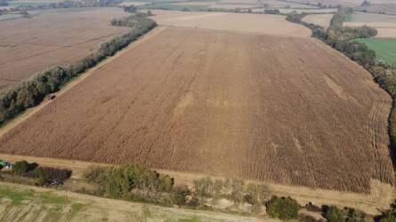 Takarónövények a talajművelés nélküli növénytermesztésben - Notill technológia (2. rész)